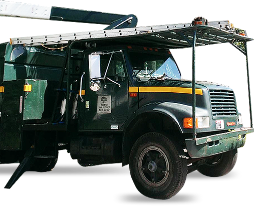 Sunrise Tree Service Truck
